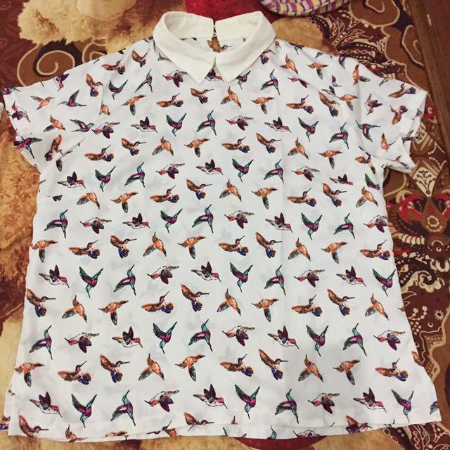 Kemeja Colar Bird
