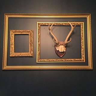 Gold plastic frame set with Antlers