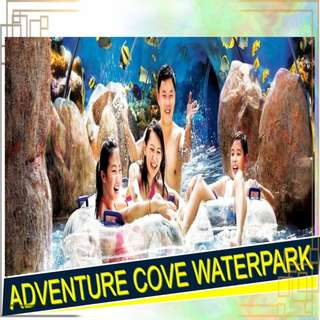 ADVENTURE COVE ADVENTURE COVE ADVENTURE COVE ADVENTURE COVE ADVENTURE COVE ADVENTURE COVE ADVENTURE COVE