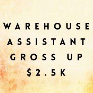 Warehouse Assistant *50