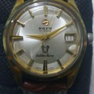 Rado oyster perpetual golden horse gold mens watch