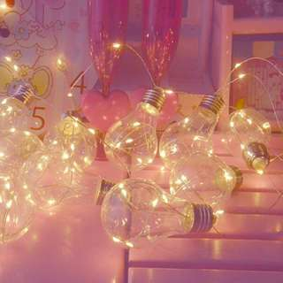 Fairy Light In Bulb String Light