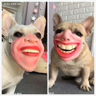【現貨】 法鬥 鬥牛犬  爆牙面具 寵物 搞笑面具