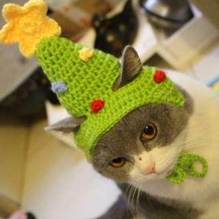 毛小孩 貓貓 手工 聖誕帽 寵物 聖誕樹 裝飾 帽子 頭飾 療癒 聖誕節 慶祝 搞笑 賣萌 寵物 貓咪 變裝 聖誕 派對