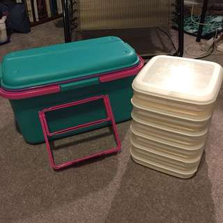 Large Storage Bin with modular inserts