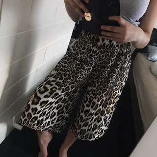 Bardot Leopard Pants