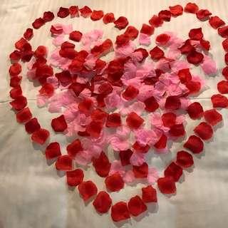 Silk Flower Petals! 100 Pieces!