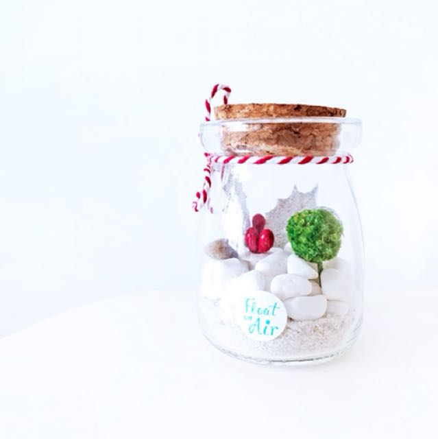 Aerium: Jingle Tiny witn preserves flowers