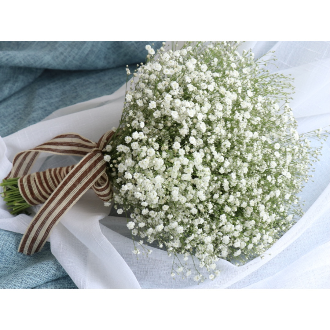 Bouquet of white babys breath flower design craft others on photo photo photo photo izmirmasajfo