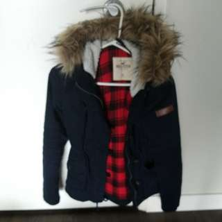 Hollister fall coat