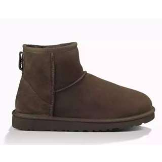 Brand New Ugg Classic Mini Size 8 Chocolate Colour