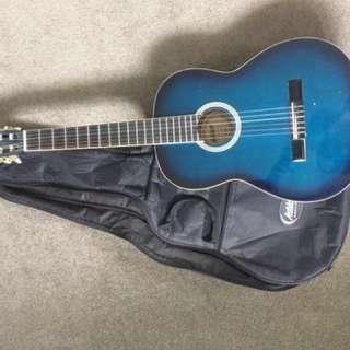 Ashton Guitar w Case and Capo