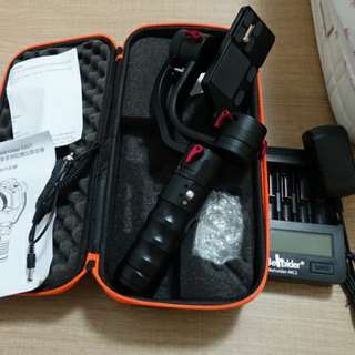 Ikan Beholder DS-1 for sale