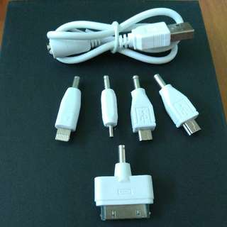 Multi Head USB Charging Cable