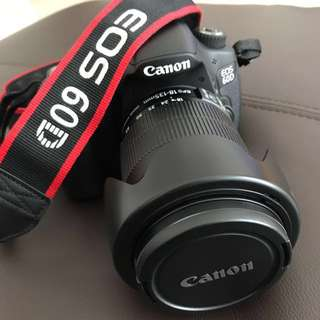 Canon EOS 60D with EF-S 18-135mm IS Lens