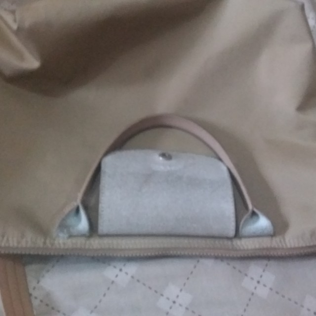 Longchamp bag ( class A only)
