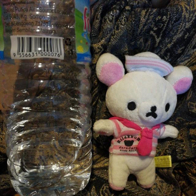 Rilakumma bear white teddy