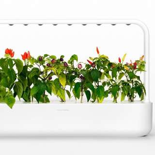 Smart Garden 9 (white) *only 1 in stock*