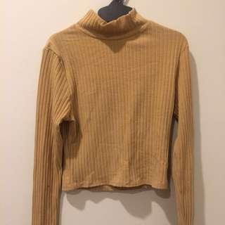 Crop Turtle Neck Sweater