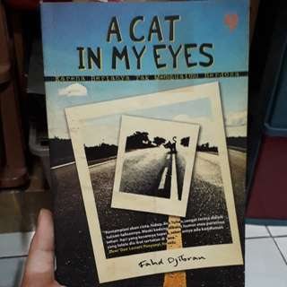 Novel A Cat In My Eyes