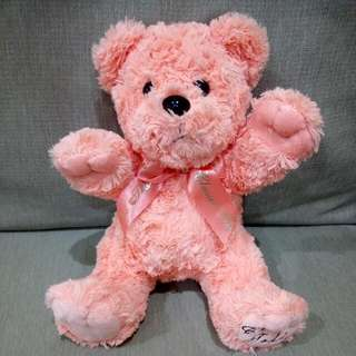 🚚 ✨全新🎉9吋坐姿粉橘色泰迪熊