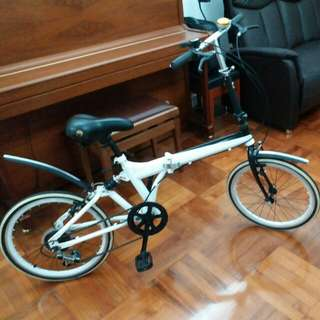 Foldable Bicycle for Teens and Adults