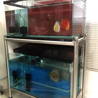 Two 3ft fish tank with stainless steel stand (Bukit Batok 650524)