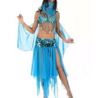 Arabian Belly Dance Costume/ Arabian Belly Dance Kostum