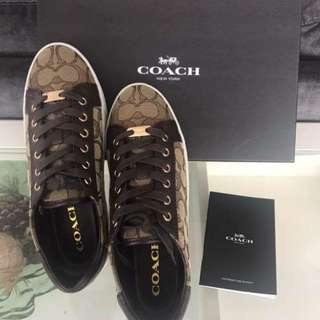 REPRICED: Authentic Brandnew Coach Paddy SIG