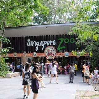 Singapore Zoo|| Physical ticket