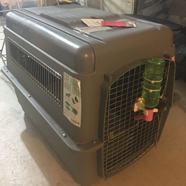 IATA approved Pet / Dog Crate