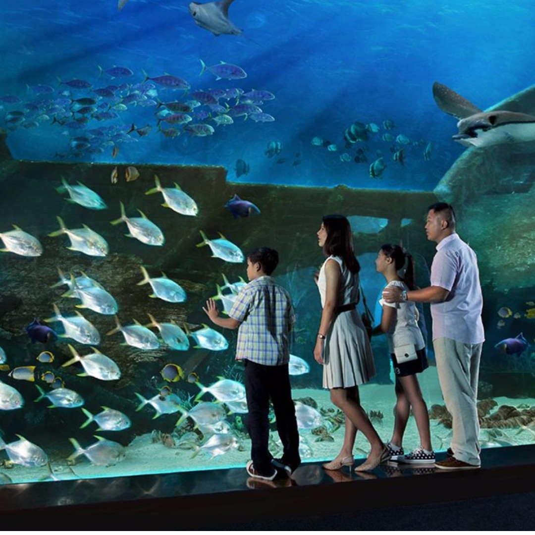 S.E.A. Aquarium - Child