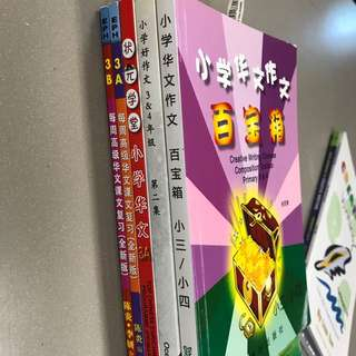 Primary 3 Chinese Enrichment Assessment books
