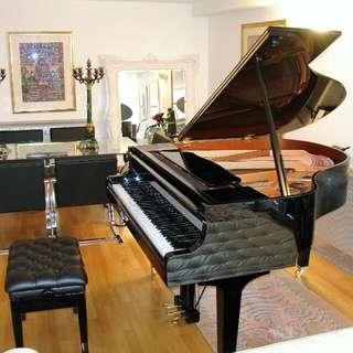 Yamaha GB1 Baby Grand Piano + free leather stool/bench (Petite Grand Piano)