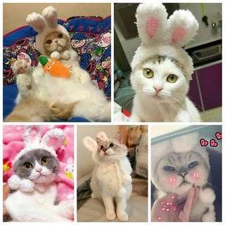 🚚 療癒 毛小孩 貓貓 手工 兔兔帽 寵物 兔子帽 裝飾 帽子 頭飾 慶祝 搞笑 賣萌 寵物 貓咪 變裝 聖誕 派對 針織帽