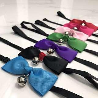 NEW pet collar toy cat dog puppy kitten leash