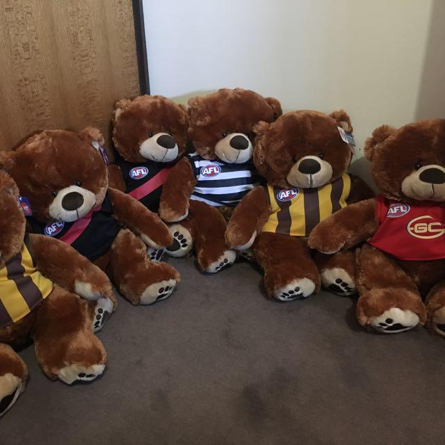 AFL Bears