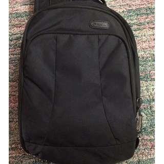 Bundle Authentic Pacsafe Body Bags