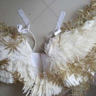 Wings With Gold Design Adult