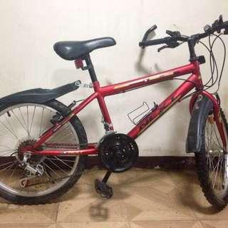 Kids / BMX bike