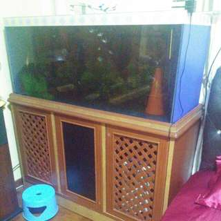 4-ft Fish Tank With Cabinet