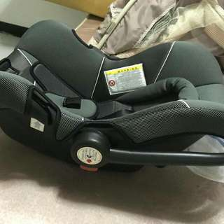 Giant Carrier Car Seat