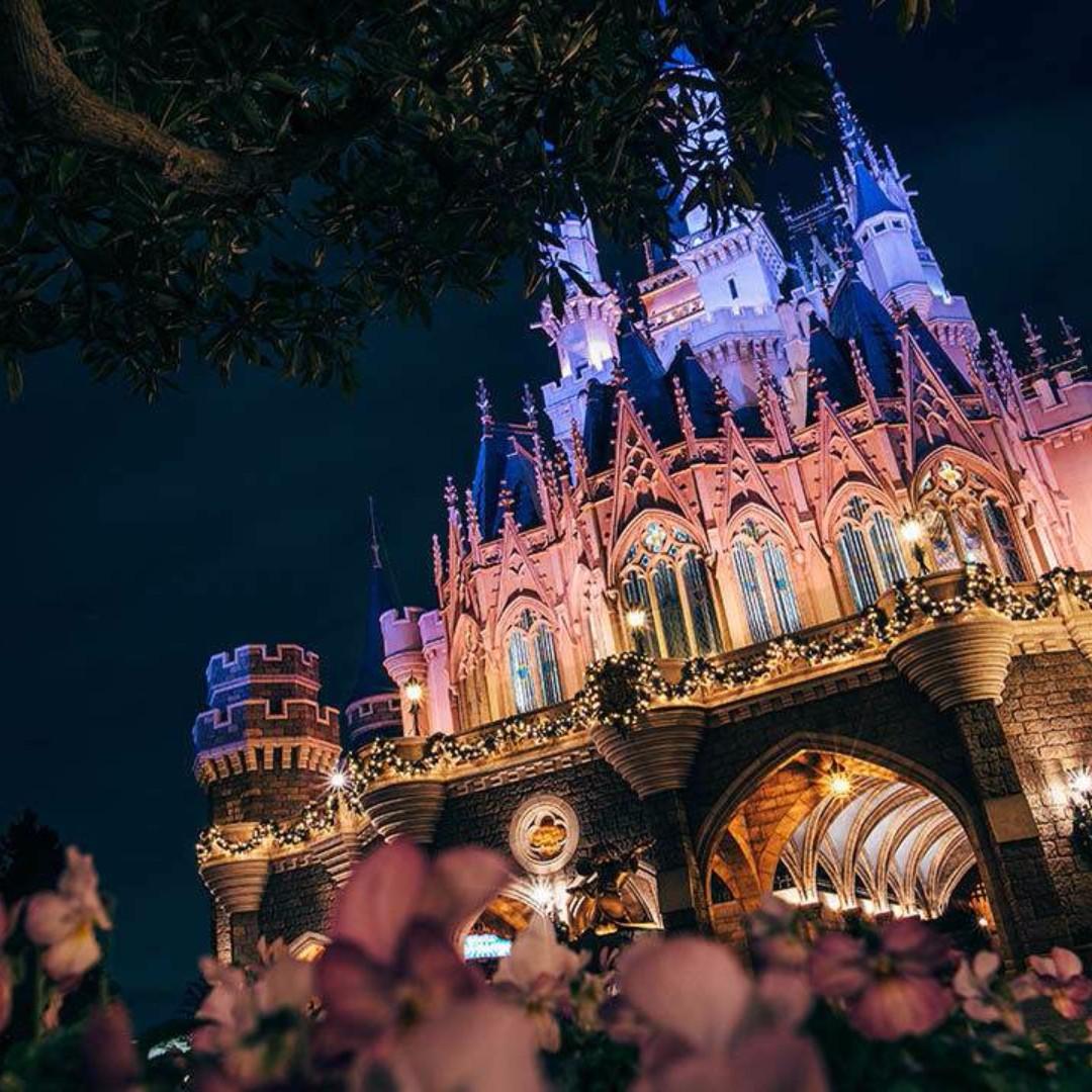 Tokyo Disneyland Or/And DisneySea - 2 Day Pass (Child)