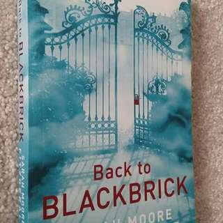 Back to Blackbrick by Sarah Moore Fitzgerald - Young Adult Fiction, Fantasy, Scifi, Time Travel, Historical