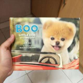 Puppies Photo Book