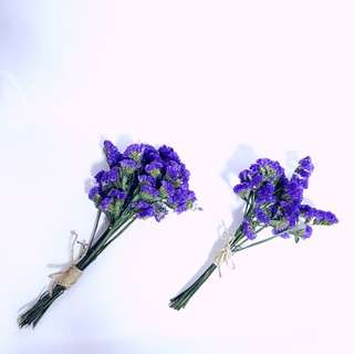 Forget Me Not Dried Flowers