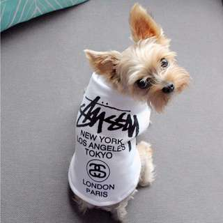 Stussy dog clothings