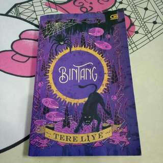 "Preloved Novel ""BINTANG"" Tere Liye"