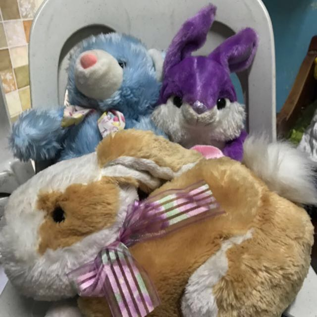 Preloved Stuffed toy take all
