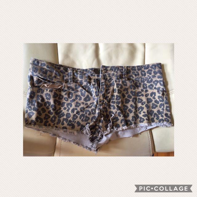 Size 10 Leopard shorts